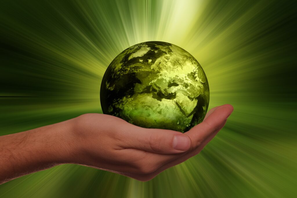 Sustainable Finance Regulations - All Green for the Blue Planet?